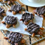 Vegan Chocolate Turtles